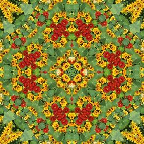 Garden Mandala II
