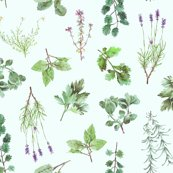 Rrrrherb_garden_pattern_lt_blue_back_shop_thumb