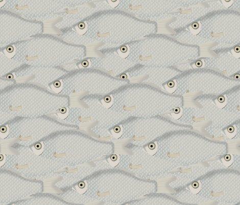 Fishrepeatfinal2_shop_preview