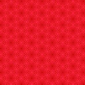 Rimini Stars - Red