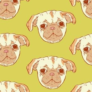 Pug Puppy | Green-Gold Background