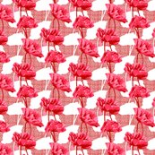 Rrimini_poppies_shadow_-_pink_shop_thumb