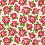 Patricia-shea-alpen-rose-pink-150-smaller_flowers_shop_thumb