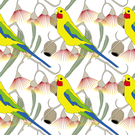 Rosella and Red Flowering Gum - White  fabric by fiona_sinclair_design on Spoonflower - custom fabric
