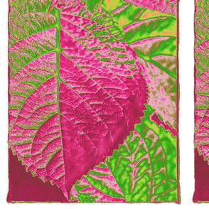 Pink_Leaf