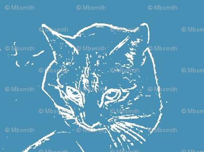 Cat on Blue