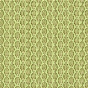 Dicanthelium linearifolium brown/green