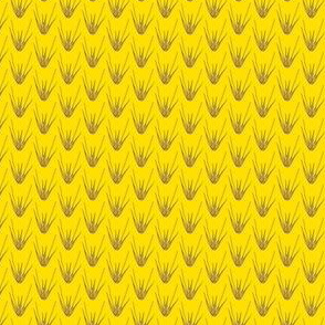 Elymus virginicus yellow/purple