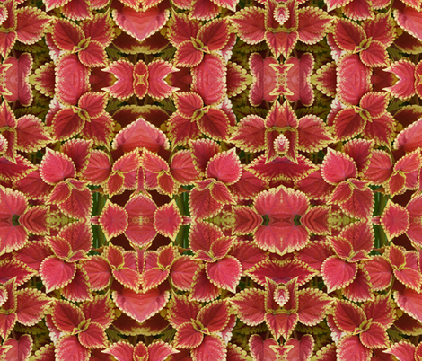 Coral Floral fabric by mikep on Spoonflower - custom fabric