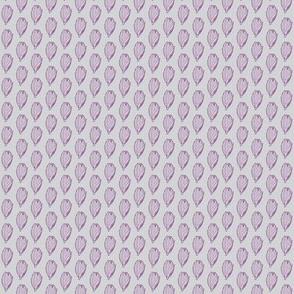 Panicum obtusum purple/lavender