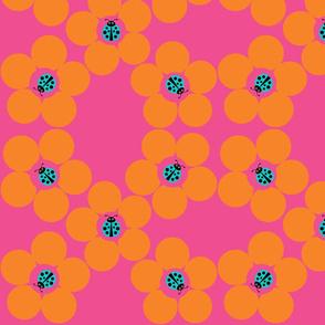 Ladybug Flower power Pink