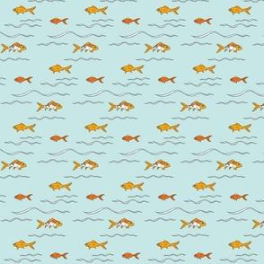 Goldfishltblue