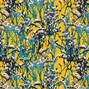 skopelos flowers yellow