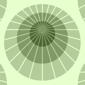 02072267 : mod mollusca : limestone green