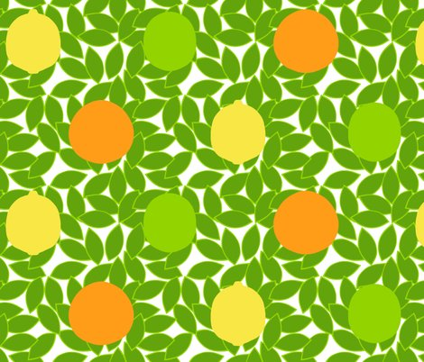 Rrrrcitrus_dots_on_leaves_white_background_shop_preview