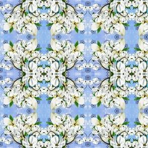 White Wilderness Flowers