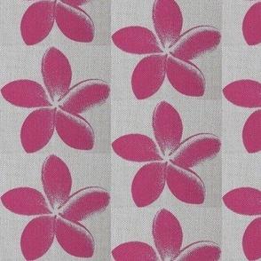 frangipani_Pink Weave
