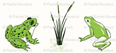 FrogsSpringGreen
