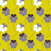 Rpansies_shop_thumb