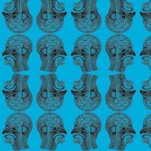 HeadAnatomy-Blue2