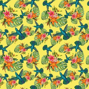 Tropical, Flowers, Hummingbird, Nature, SS14