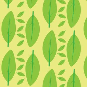 Fresh spring leafs