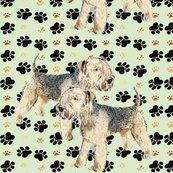 Rlakeland_terriers_shop_thumb