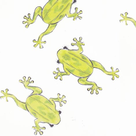 Rrrthree_frogs_shop_preview