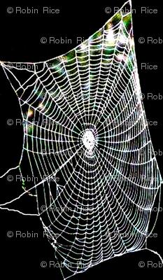 Spiderweb Lace