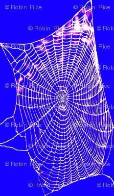 Spiderweb Lace 2