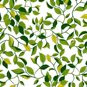 Leaf, Green and Yellow