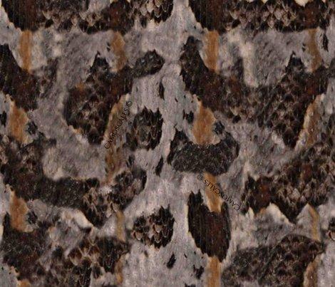 Rrtimber_rattlesnake_print_shop_preview
