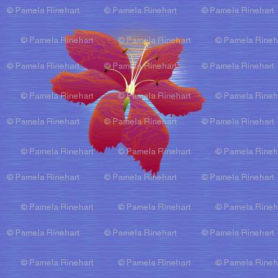 hibiscus 1500