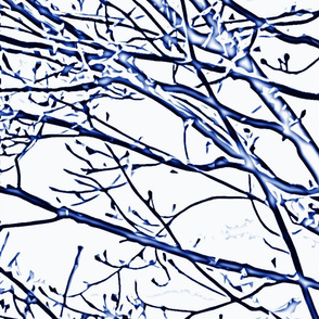 spring_branches_blue