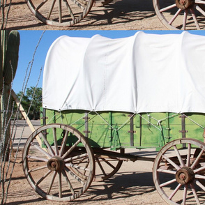 covered_wagon_023