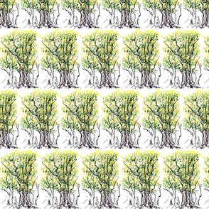 tiny_treeish_notions