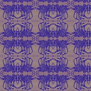 blue grevillia spider