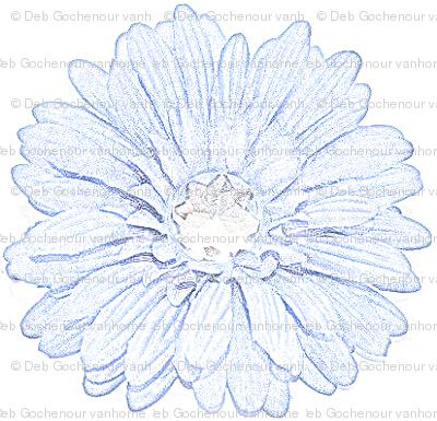 Color_Pencil_Sketch_of_bluegemflwr2