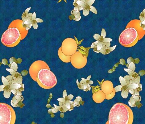 Rrgrapefruit_botanical_shop_preview