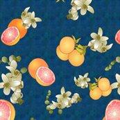 Rrgrapefruit_botanical_shop_thumb