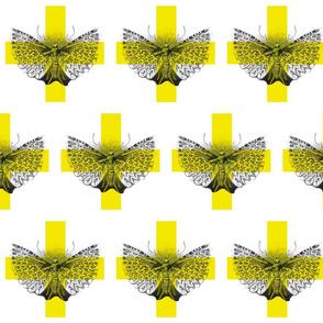 butterflyplane_copy