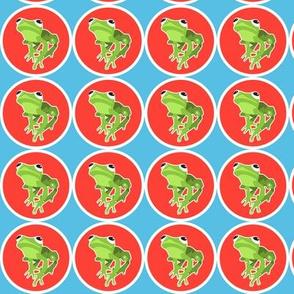lil' froggie