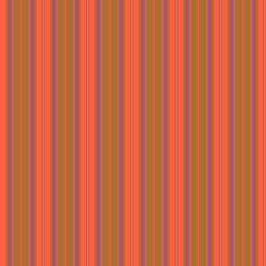 Somerville Stripe in Orange