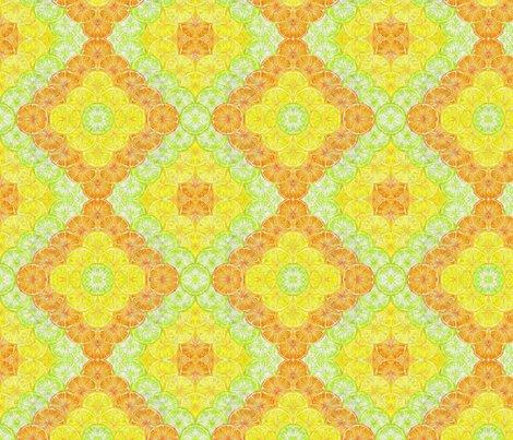 Rrexpressionist_of_citrus_shop_preview
