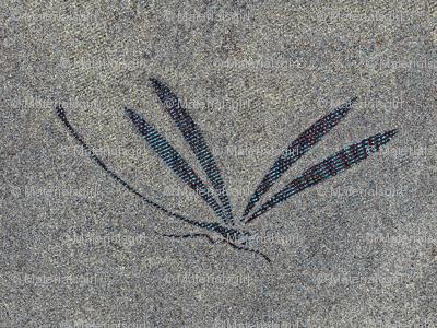 dragonfly in stone - stone grey
