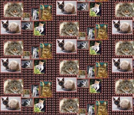 Rcat_collage_shop_preview