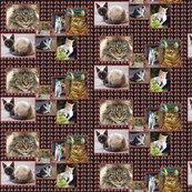 Rcat_collage_shop_thumb