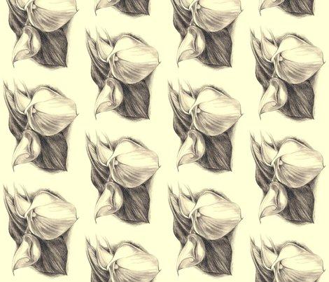 Rrr2013-01-17_calla_lilies_shop_preview