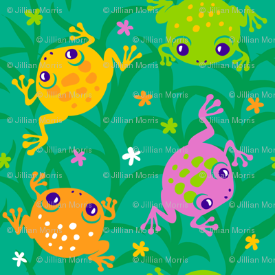 Squishy Frogs