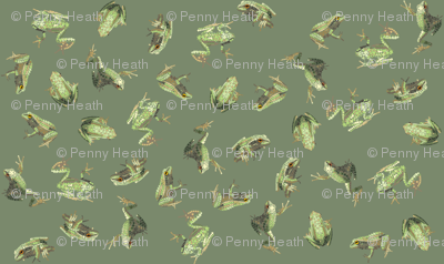 Dusky Green Amphibians